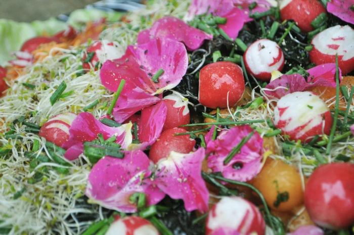kathy-kolibry-salade-jolie-700x465.jpg